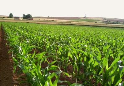 Por una agroindustria inteligente